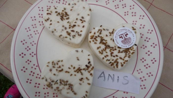 pays-alesia-seine-auxois-arbre-rond-fromage-chévre-biquette-corpoyer-la-chapelle-coeur