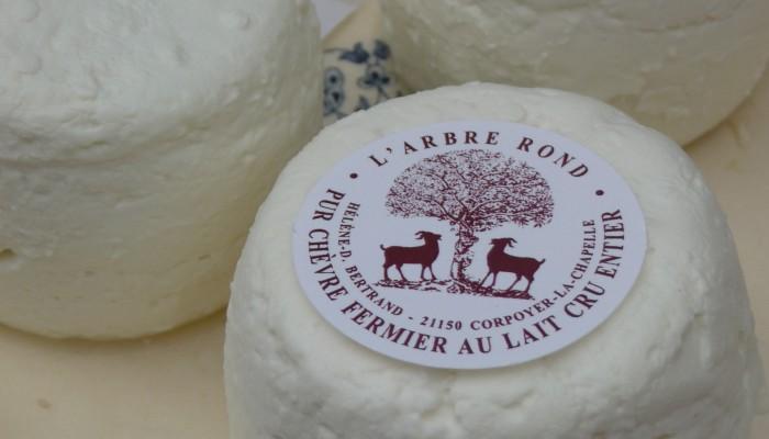 pays-alesia-seine-auxois-arbre-rond-fromage-chévre-frais-biquette-corpoyer-la-chapelle