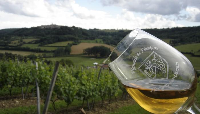 pays-alesia-seine-auxois-vignoble-flavigny-verre