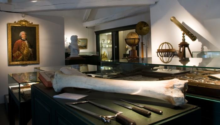 pays-alesia-seine-auxois-montbard-collection-permanente-musee-site-buffon-tibia