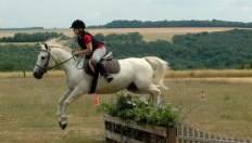 pays-alesia-seine-auxois-bourgogne-thenissey-equitation-cavalier-saut